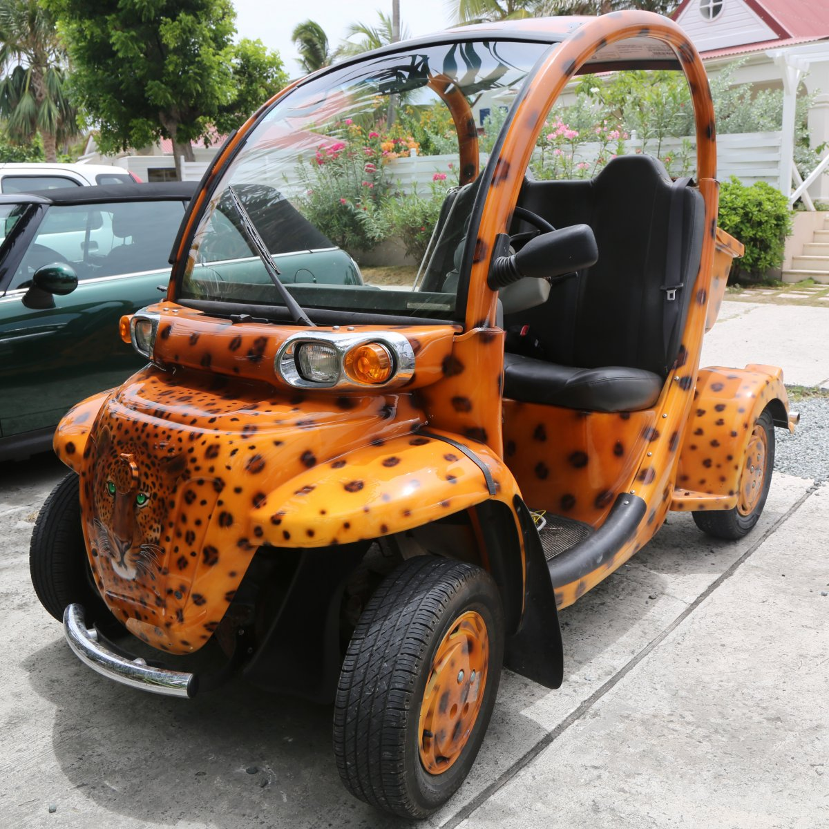 Electric Vehicle in St. Barts
